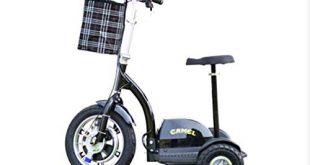 WJSW Alter elektrischer 3 Rad Motorroller Roller gruen Umweltschutz intelligenter Antrieb 48V12A 310x165 - WJSW Alter elektrischer 3-Rad-Motorroller Roller grün Umweltschutz intelligenter Antrieb 48V12A dritte Gangeinstellung/Akkulaufzeit 45 km, Schwarz