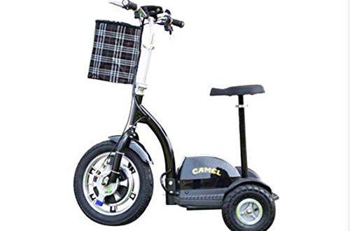 WJSW Alter elektrischer 3-Rad-Motorroller Roller grün Umweltschutz intelligenter Antrieb 48V12A dritte Gangeinstellung/Akkulaufzeit 45 km, Schwarz
